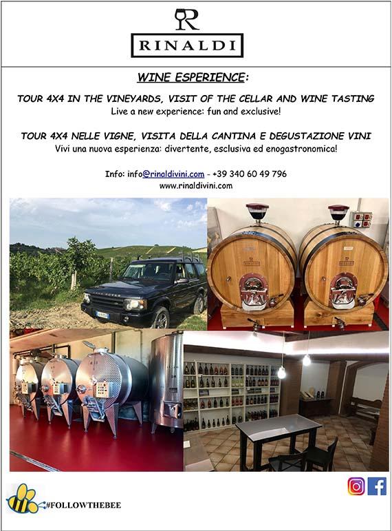 Wine Experience – Tour 4×4
