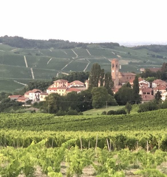 Patrimonio Unesco Ricaldone in Piedmont - Italy